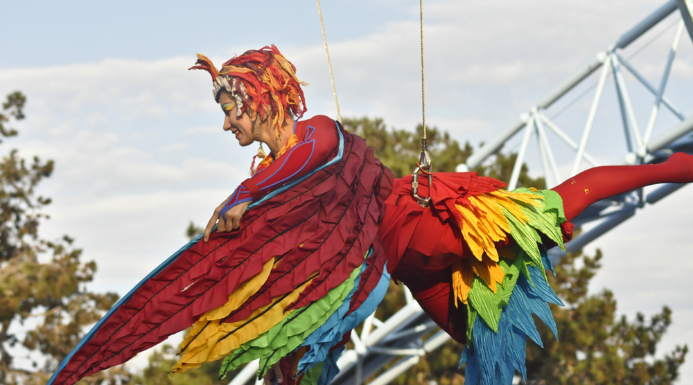 Photo of lady in macaw costume