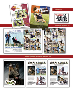Samples of dog show ads